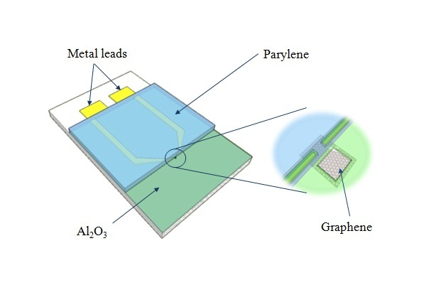 fig1 Afm Schematic on